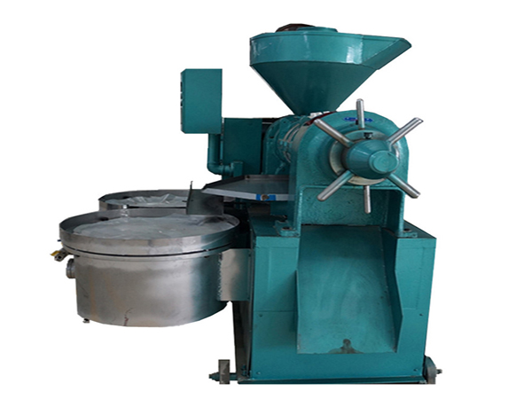 buying the palm fruit oil press machine - oil press