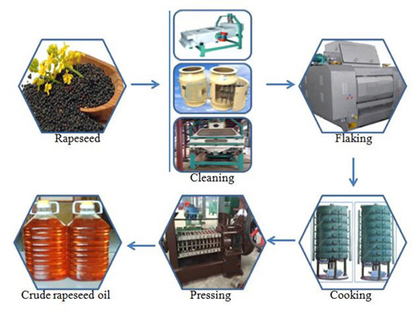 sesame oil extraction plant for sale_vegetable oil extraction
