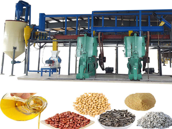 10-50tpd rapeseed oil press machine production line