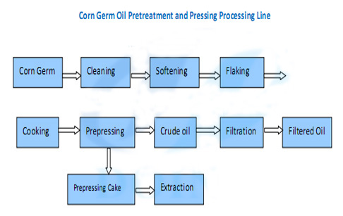 corn germ oil extraction process